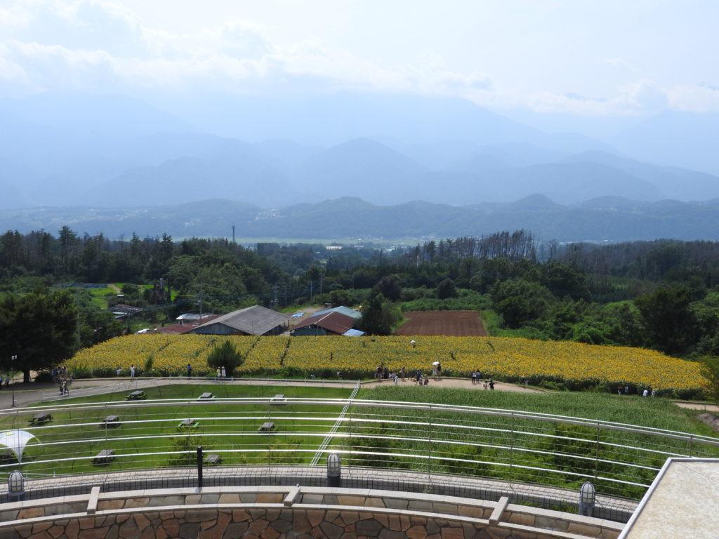 明野ひまわり畑展望台