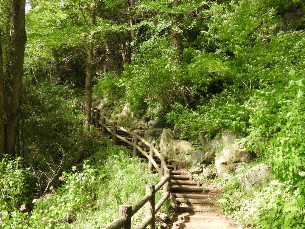 猿橋へ上り階段