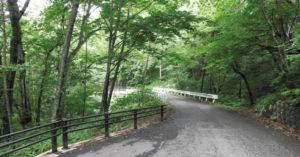 標識の後は吐竜の滝まで一本道